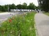 Meersburg - Stellplatz 1 Allmend